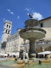 Assisi fountain bird