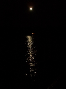 """moon over water"" Photo by Julia Walsh FSPA"