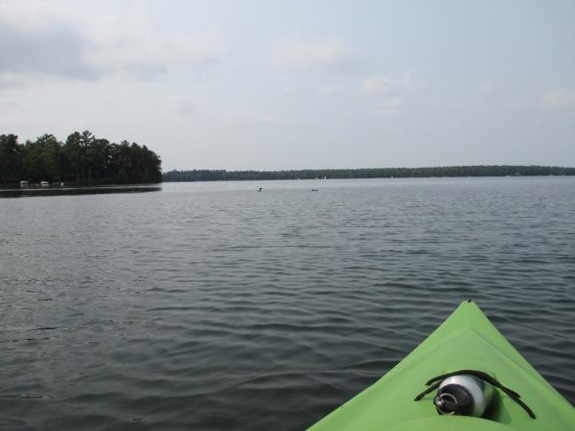 """Rowing on Trout Lake"" photo by Julia Walsh FSPA"