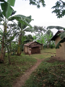 Bufamba (Ugandan host family father's home village), courtesy of Nicole Steele Wooldridge